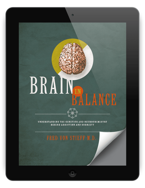 Concord Addiction Recovery - Image of the Brain in Balance book cover